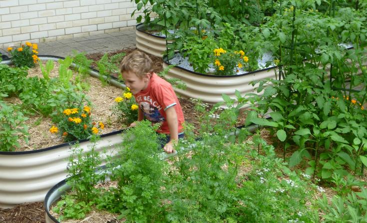A young visitor enjoys the Pilgrim Uniting Church community garden. This photo was taken by Peter Russell and used with permission.